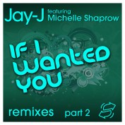 If I Wanted You Remixes pt. 2